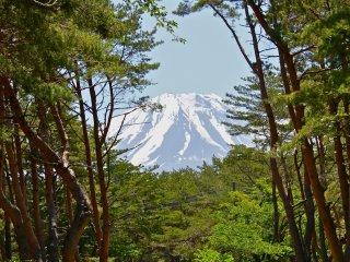 Taken in May timeframe, Mt. Fuji was such a sight to see while camping!