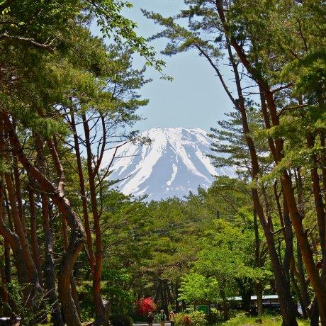 Le Camping du Lac Motosuko en Photos