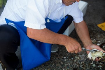 <p>Seafood restaurants prepare the shellfish outside&nbsp;</p>