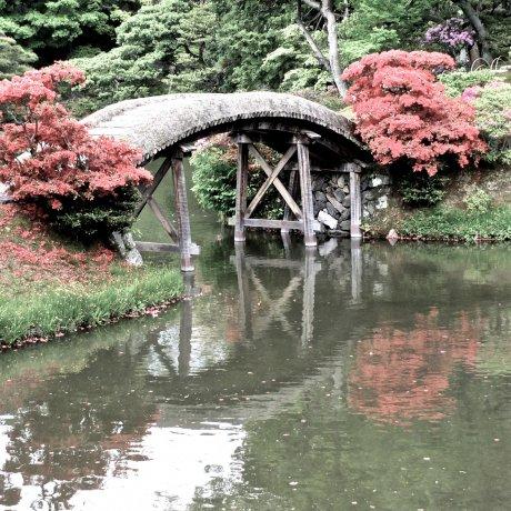 Kyoto's Katsura Imperial Villa