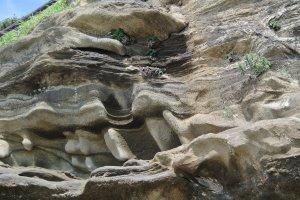 風と潮で浸食された岩
