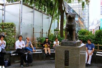 <p>รูปปั้นฮาจิโกะ (Hachiko) จุดนัดพบยอดนิยมของชิบุย่า</p>