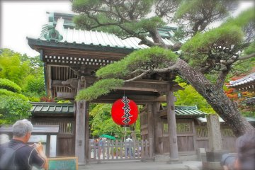 <p>The entrance to Hase-dera Temple in Kamakura.</p>