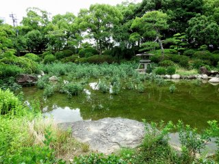 案内板によればこの池には漏水があり、水が溜まらないそうだ