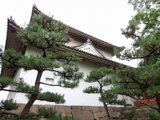 The Rokuban (sixth) Turret and Japanese pine trees