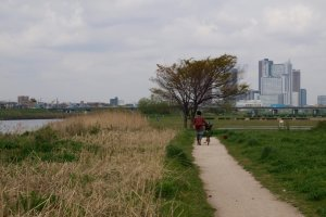 Lone cyclist on the riverside path