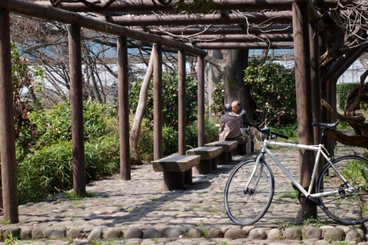 Cycling the Tamagawa