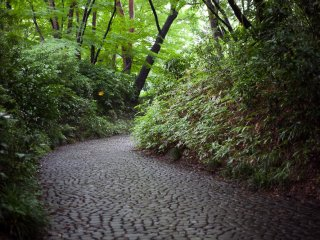 Salah satu dari banyak jalan setapak yang terbuat dari batu