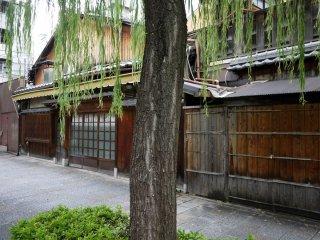 هناك العديد من الماشييا الخشبية التقليدية ، أوالمنازل ، بجانب النهر