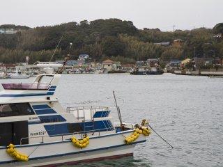 Vài chiếc du thuyền cũng neo ở cảng