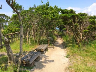 Follow this short pathway to reach Tomyodo Lighthouse
