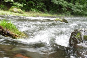 The flow of the stream was unexpectedlystrong!