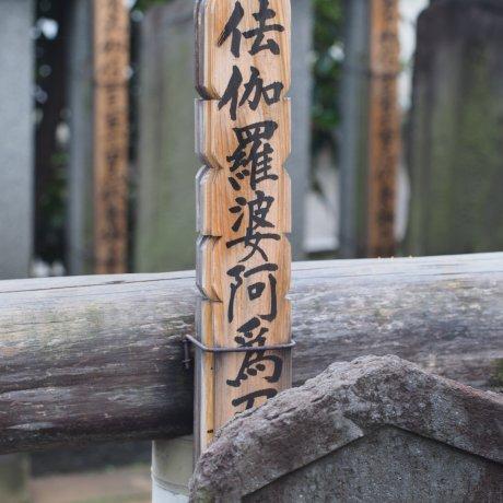Kisah Kesetiaan dan Keberanian Tokyo