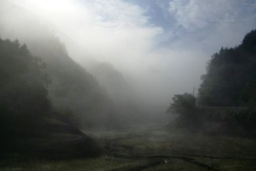 교토 서쪽에서 몇 시간 거리에 있는 오카야마 현 쓰야마의 안개가 자욱한 산