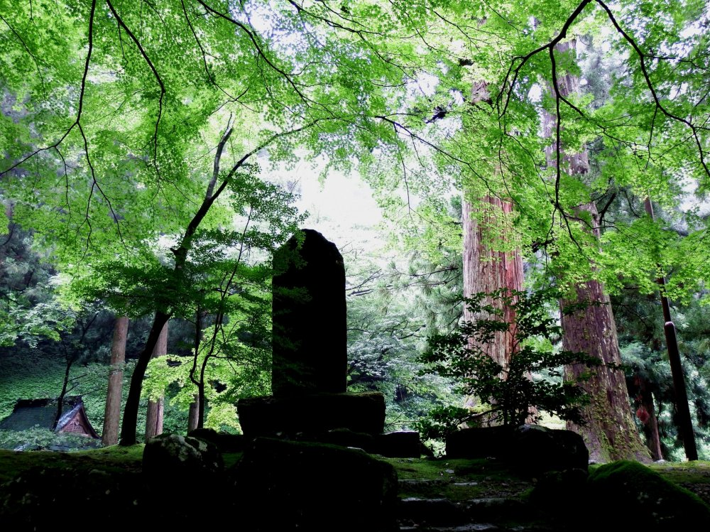 Stone statue standing in the serene woods along the pathway leading to the entrance gate of Eiheiji temple