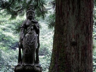 Along the walkway, you'll find some beautiful statues in the woods