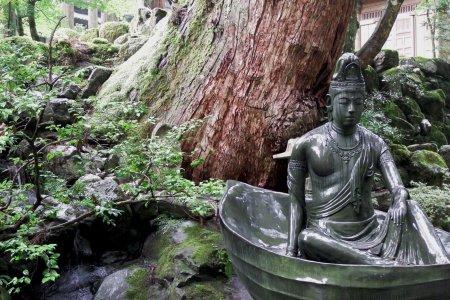 Con đường yên bình đến chùa Eihei