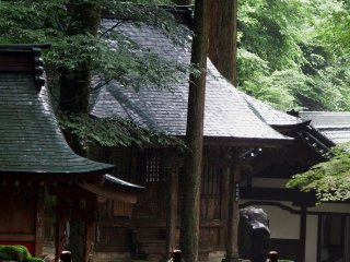 Closer look at small shrines in the forest