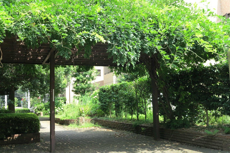 Oakhouse的院子,满目绿意