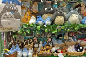 <p>Totoro&nbsp;plush toys are so kawaii, you&#39;ll have trouble deciding on which one to get.</p>