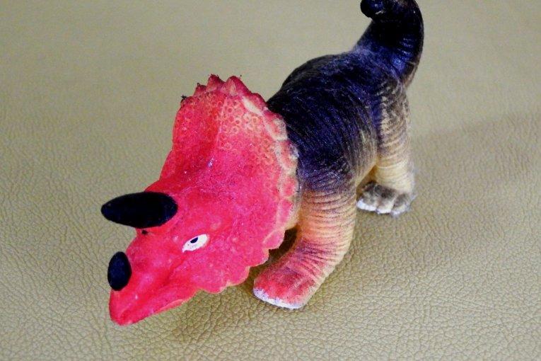 공룡알을 부화 시켜라!