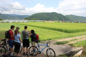 Explication sur les champs de riz et l'utilisation de ceux-ci