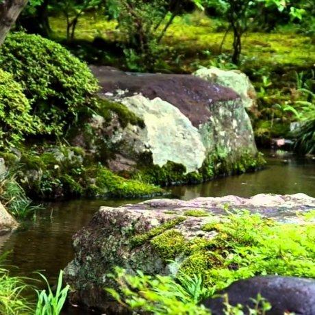 Taman Nishimura, Kyoto