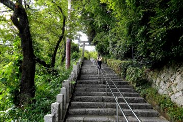 <p>Go up the long stone stairs to the shrine</p>