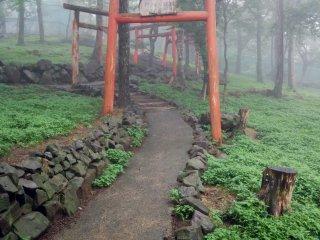 Follow the tori gate to...