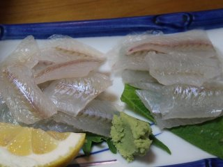 Fresh smelt sashimi caught in Fukui