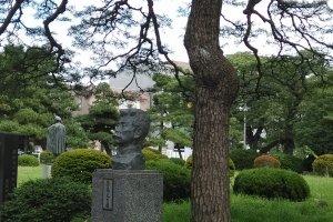 The tree and the statue of Lu Xun in Katahira Campus of Tohoku University