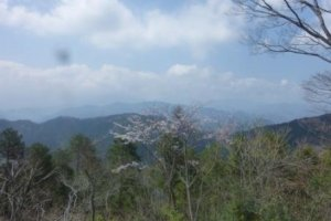 View from the top of Takao