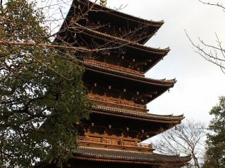 The tallest five-story pagoda​ in Japan