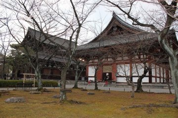 Kodo Hall can be seen beyond a grove of trees