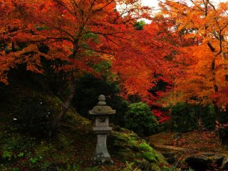 臥龍(がりょう)の庭。今にも天に駆け登ろうとする龍を水の流れと石組で躍動的に表した池泉庭園。佇む自分の心を解き放ってくれる