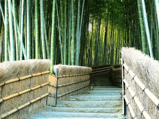 あだしの念仏寺 空海が如来寺を建立し、野ざらしになっていた云わば無縁仏を埋葬したのに始まるとされ、後に法然が念仏道場を開いて、念仏寺となったという