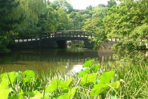 Tsurumai Park, Nagoya.