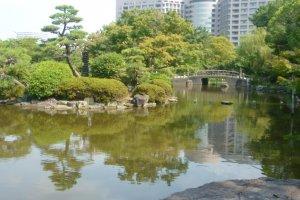 Pond in Tsurumai Park, Nagoya.