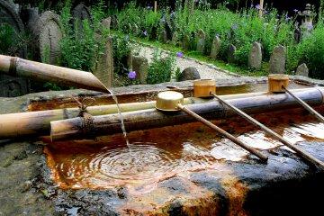 Gango-ji in Summer