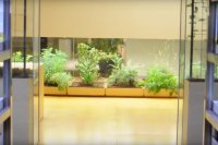 Gedung Paling Hijau di Tokyo