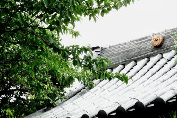 <p>Green leaves and the temple roof</p>