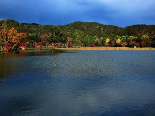 正面の山、朝原山も徐々に秋の色づきを見せる