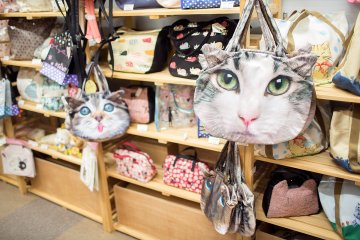 <p>Need to accessorize? You&#39;ll be the coolest kid on the streets sporting these trendy bags</p>