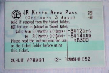 <p>A close-up of the ticket attached to the pass</p>