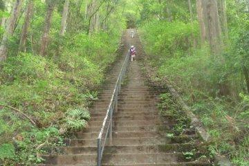 Каменные ступени в конце прогулки
