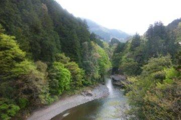 Река возле станции Окутама