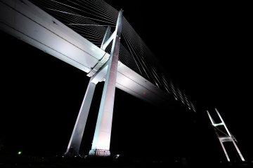 <p>White elegance of &#39;Megami Ohashi (Goddess Bridge: Venus Wing) took my breath away</p>