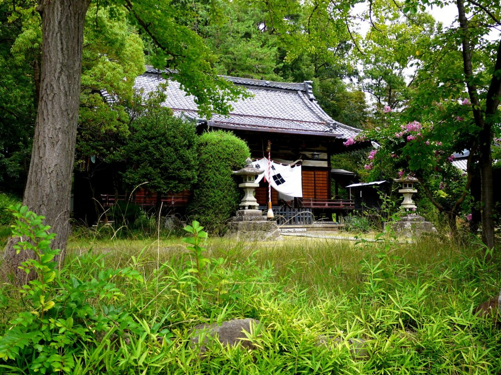 Summer growth surrounds the shrine