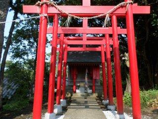 Một góc đền chính gần khuôn viên lễ hội.