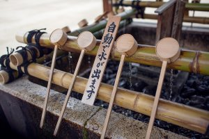At the fountain, or temizuya, water for cleaning the hands and mouth drips from holes in bamboo